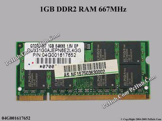 04G001617652, NF1G760563005