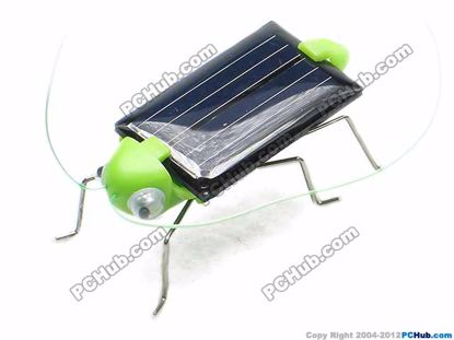 66081- Funny grasshopper, Green