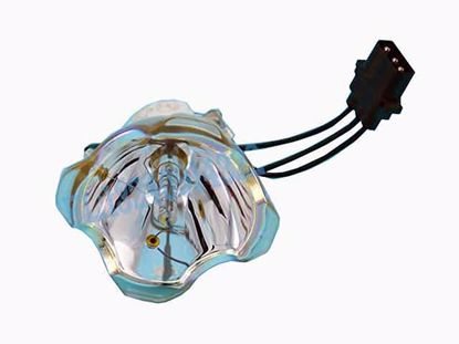 DT00871 Lamp without Housing