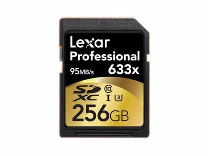 SDXC256GB, Professional